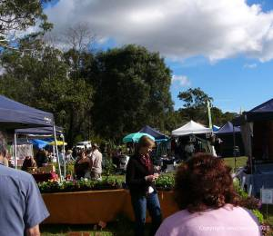 Cobbity Market